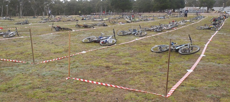 Mountain bikes laying in rows